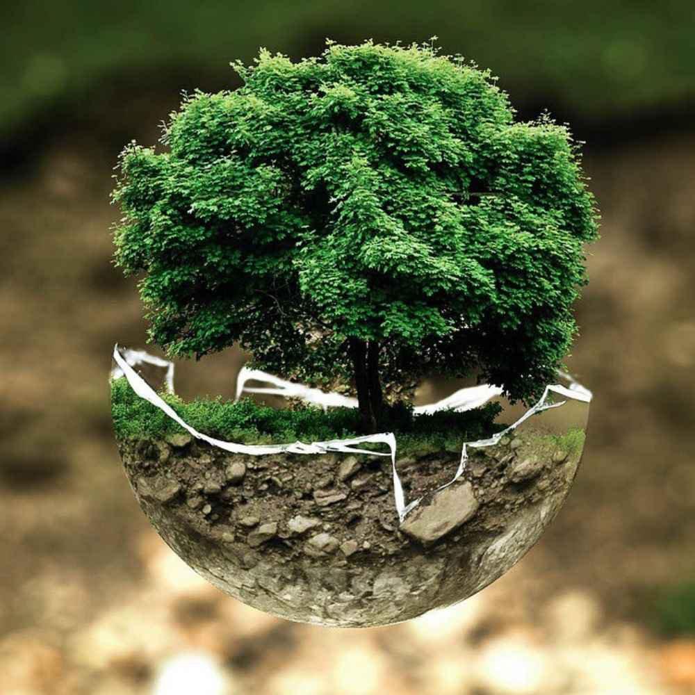 umweltschutz quadratisch